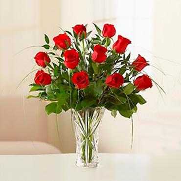 Amazing Roses - Guatemala